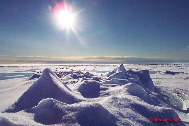 arkticheskaia-problema.jpg