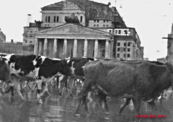 bitva-za-moskvu-1941-1.jpg