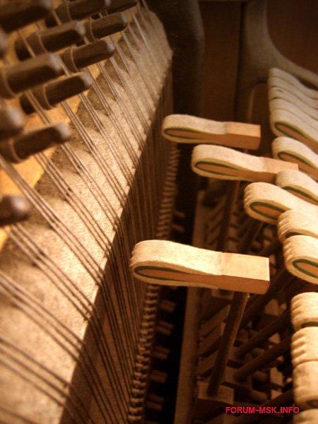 kakaya_raznitsa_mezhdu_pianino_i_fortepiano_2.jpg