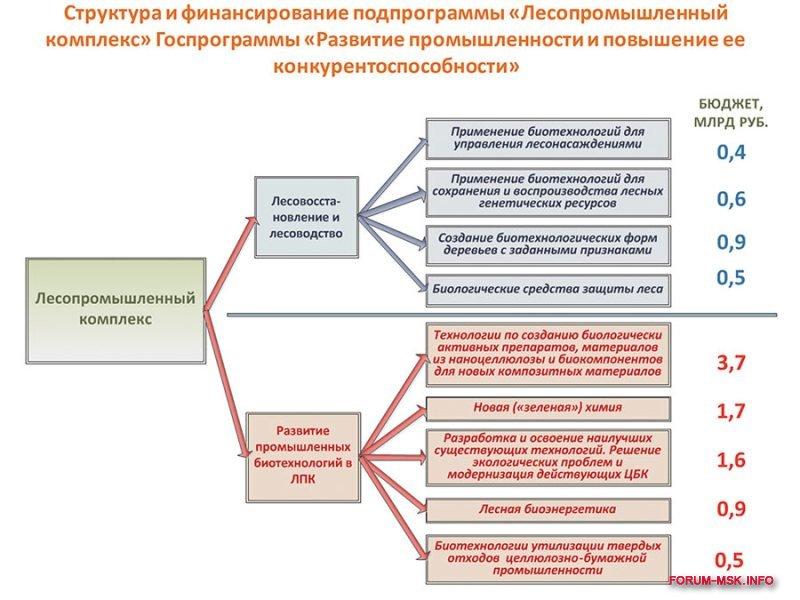 lesnaya_i_derevoobrabatyvayushchaya_promyshlennost_rossii (3).jpg