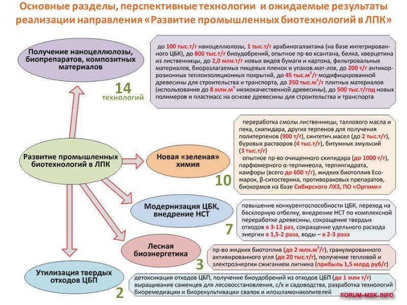 lesnaya_i_derevoobrabatyvayushchaya_promyshlennost_rossii (4).jpg